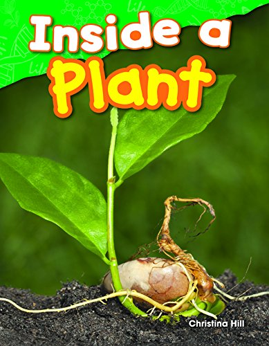 inside-a-plant-science-readers-content-and-literacy