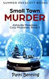 Small Town Murder (Asheville Meadows Cozy Mysteries) (Volume 1) by  Patti Benning in stock, buy online here