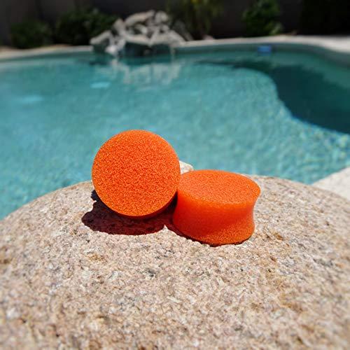 Tiger Lily Orange Resin Ear Gauges or Tunnels ()