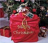 30'' x 36'' Santa Bag Adult Accessory