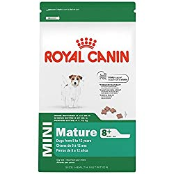 Royal Canin Size Health Nutrition Mini Mature 8+ Dry Dog Food, 13-pound
