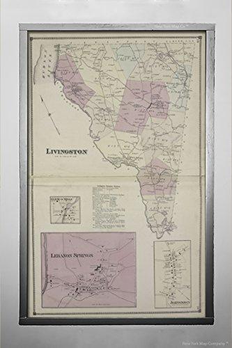 1873 Map Philadelphia Livington Townshi; Glenco Mills Villag; Livington Business Notices; Lebanon Springs Villag; Johnstown Villag D.G. Beers & Co. (Cartographer)|Vintage Fine Art Reproduction|Rea