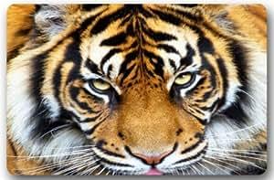 """tslook modas Felpudo tigre dibujo casa para interiores/exteriores/puerta delantera Welcome Mat (23.6x15.7, """"L x W)"""