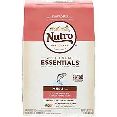 Nutro Wholesome Essentials Adult Small Bites Natural Dry Dog Food Small Kibble Salmon, Brown Rice & Sweet Potato Recipe, 30 lb. Bag