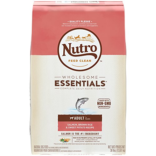NUTRO WHOLESOME ESSENTIALS Natural Adult Dry Dog Food Salmon, Brown Rice & Sweet Potato Recipe, 30 lb. Bag (Nutro Salmon Dog)