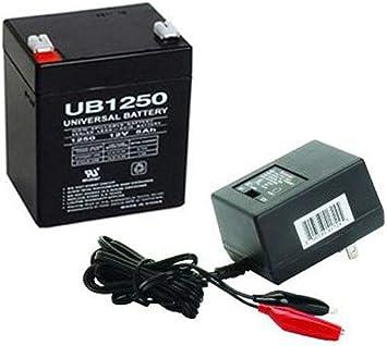 Amazon.com: Combo de baterías con cargador UPG UB1250 ...