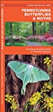 Pennsylvania Butterflies and Moths, James Kavanagh, 1583554629