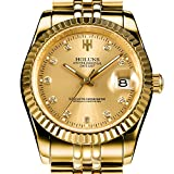 PASOY Mens Full Gold Watch Automatic Mechanical Gilded Steel Self-wind Sapphire Glass Dress Watches 39MM