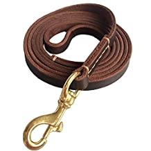 "Fairwin Leather Dog Leash 6 Foot - Best Dog Training Leash Heavy Duty for Large Medium Small Dogs ( 5/8"", Brown)"