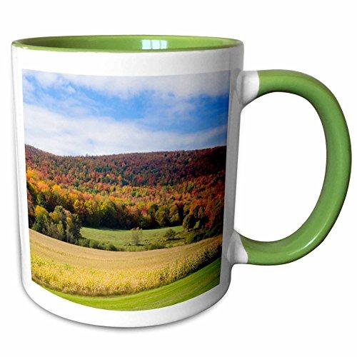 3dRose Danita Delimont - Agriculture - USA, Vermont, Montgomery. Panoramic view of corn and fall foliage. - 15oz Two-Tone Green Mug (mug_207909_12)