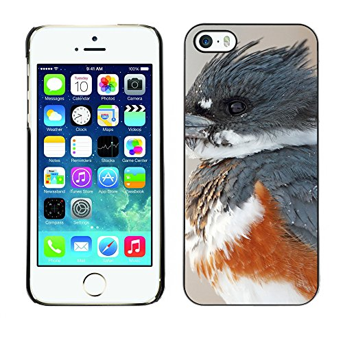Premio Sottile Slim Cassa Custodia Case Cover Shell // F00017222 Kingfisher bird // Apple iPhone 5 5S 5G