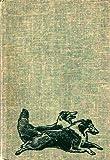 Lad of Sunnybank, Albert Payson Terhune, 0451120876
