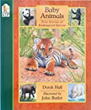 Baby Animals, Derek Hall, 1564023621