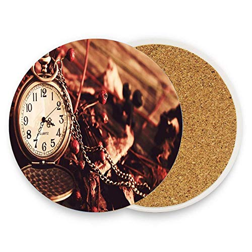 Cute Drink Coasters, Stone Absorbent Coasters With Cork Backing, 1pcs Set - Quartz Pocket Watches Dried Berries