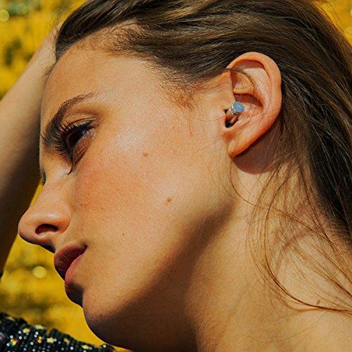Flare Audio - Isolate MiNi Pro Polished Ear Protection Earplugs by FLARE AUDIO (Image #2)