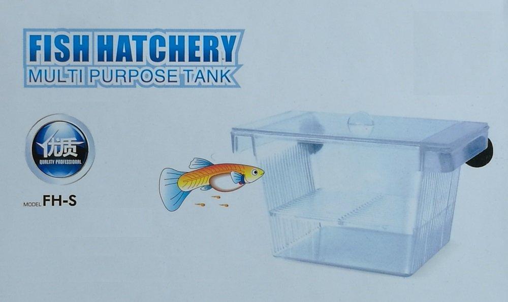 Tropical-Reef TR-330 - Tanque criadero de peces flotante para acuario 4 en 1: Amazon.es: Productos para mascotas