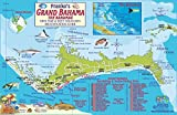 img - for Bahamas - Grand Bahama Island Dive Sites and Reef Creatures Map Electronic Franko Maps Fish ID Card and Map book / textbook / text book