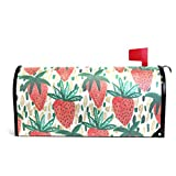 Chu warm Mailbox Covers Magnetic Watercolor Strawberry Standard Size