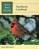 Wild Bird Guide: Northern Cardinal (Wild Bird Guides)