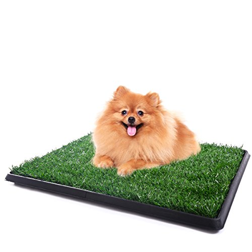 PROSPERLY U.S. Product Pet Potty Trainer Grass Mat Dog Puppy Training Pee Patch Pad Indoor - Rouge Baton Frame Shop