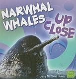 Narwhal Whale up Close, Jody Sullivan Rake, 1429622660