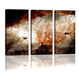 Cao Gen Decor Art-A01535 3 panels Framed Wall Art Abstract Print Painting on Canvas for Home Decor