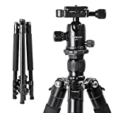 Tairoad 62.5'' Lightweight Aluminum Vlogging Tripod with 360° Panorama Ballhead Compact for Travel Work Load Up to 17.6lbs