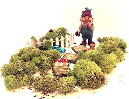 Gnome Garden Kit - Boy Gnome with 11 Miniature Fairy Garden Accessories and Moss]()