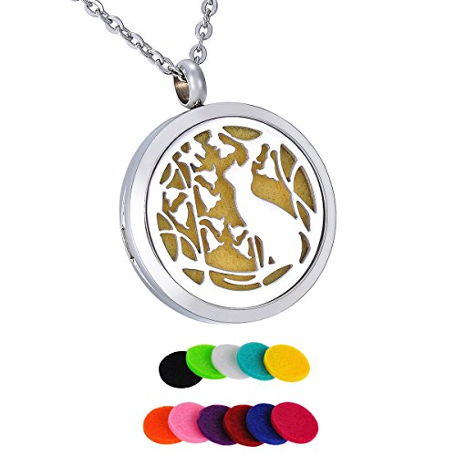 HooAMI Aromatherapy Essential Oil Diffuser Necklace - Vine Flower Cat Stainless Steel Locket Pendant,11 Refill -