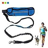 KYC 3 Colors Hands Free Dog Leash Pet Training Leash with Waist Bag
