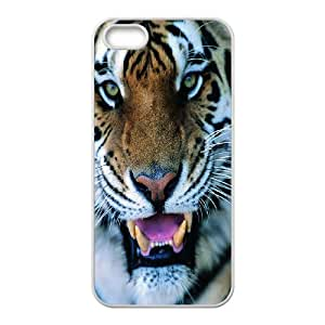 The king of beasts Tiger Hard Plastic phone Case Cover+Free keys stand For Apple Iphone 5 5S Cases ZDI040885