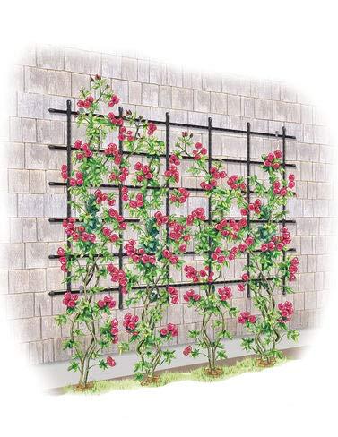 Gardener's Supply Company Titan Customizable Wall Trellis (Brackets Trellis)