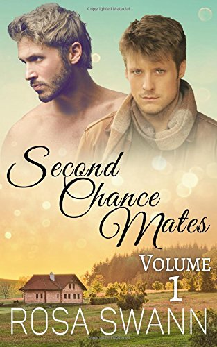 Second Chance Mates: Volume 1 by CreateSpace Independent Publishing Platform