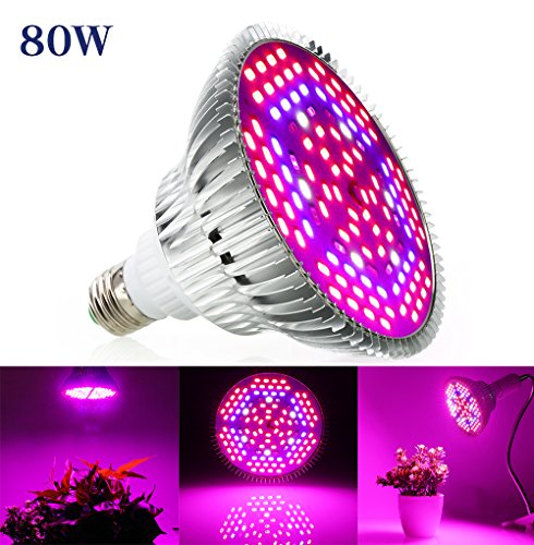 80W LED Grow Light Bulb product image