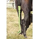 EQ Stretch Braid n Tail Bag Black