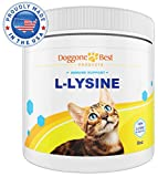 Lysine for Cats - Best L-lysine Powder Supplement - Human Grade All Natural Immune System Support - Helps Maintain Eye & Respiratory Health - 900mg Per Serving - 8oz - Made in the USA
