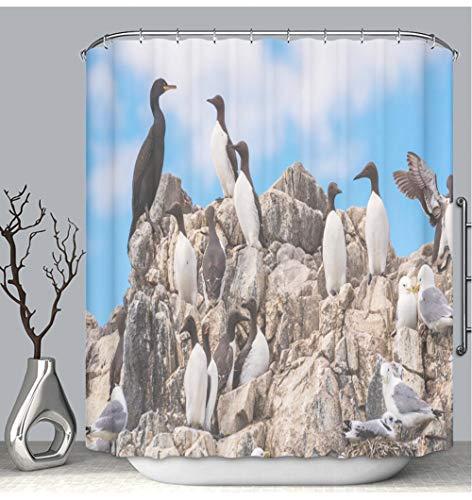 BEICICI Color Shower Curtain Liner Anti-Mildew Antibacterial Colony of Seabirds at Farne Islands Custom Shower Curtain Bathtub Bathroom Accessories 72W×78Linch