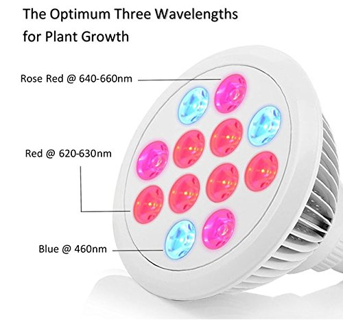 Industrial Led Grow Lights : Industrial grade led grow light essential choice full