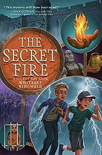 Book Cover: The Secret Fire
