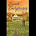 Sweet Surprises (A Home Sweet Home Novel)