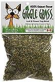 Giggle Grass Catnip 1/2 oz