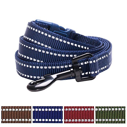 Blueberry Pet Durable Reflective Midnight