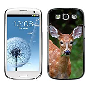 Just Phone Cover Etui Housse Coque de Protection Cover Rigide pour // M00138201 Ciervo maderas Fawn Animal Mamífero // Samsung Galaxy S3 S III SIII i9300