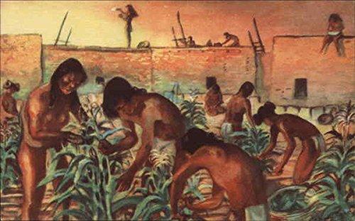 Developmental Pueblo No. 4 in Prehistoric Series Social History Original Vintage Postcard