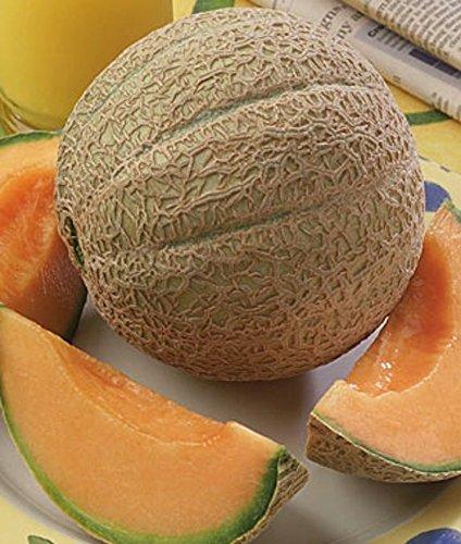 Homegrown Cantaloupe Seeds, 150, Hearts of Gold Cantaloupe