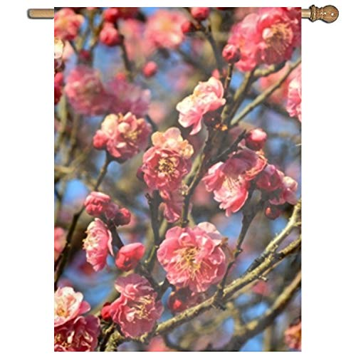 Fornate Eastif Life is Better with a The Plum Blossoms of Yoshino Baigo Single-Sided Home Flag 27 x 37 -