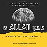 Is Allah Real? (Children's First Questions) (Volume 4)