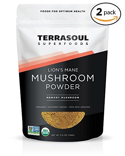 terrasoul lions mane mushroom buyer's guide for 2019