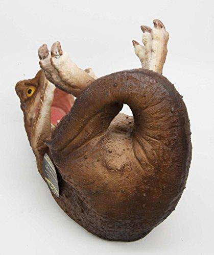 Atlantic collectibles prehistoric dinosaur t rex 8 5 long wine bottle holder caddy figurine - Dinosaur wine holder ...