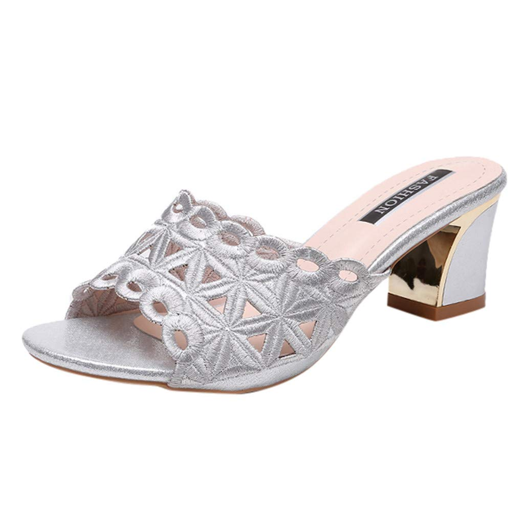 refulgence Women's Thick Heel Sandals, Embroidery Flower Square Heel Beach Sandals Roman Shoes Slippers(Silver,US=8)